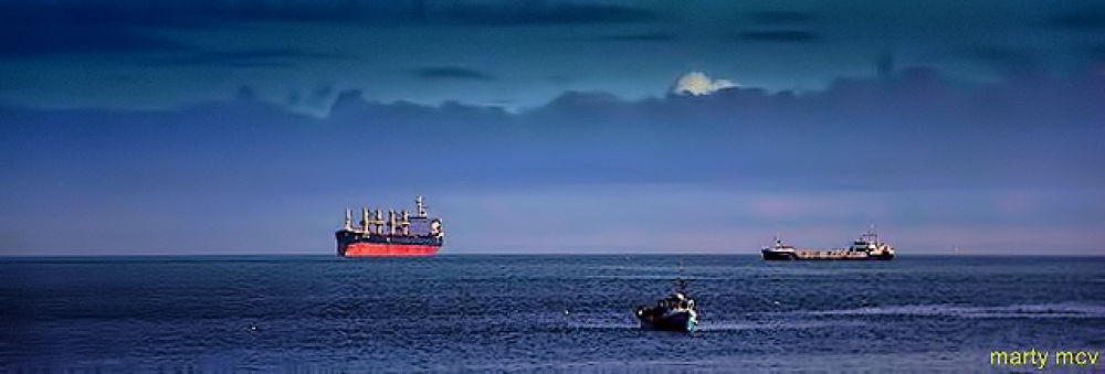 SHIPS AT SEA by Marty Mcvicker