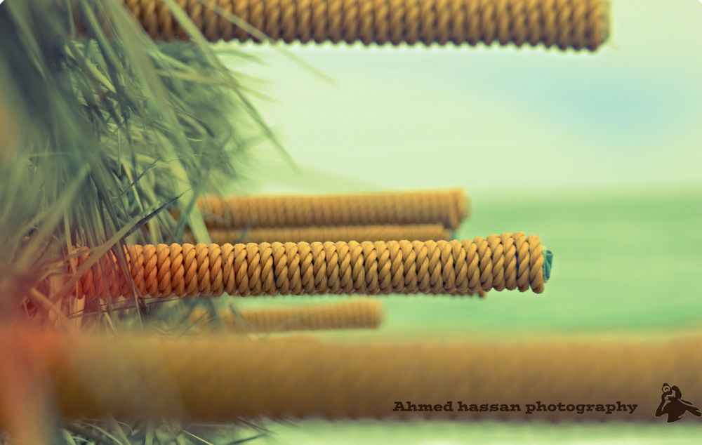 1395151130899 by Ahmed Hassan