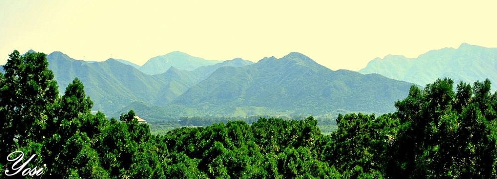 Landscape by yosi atias