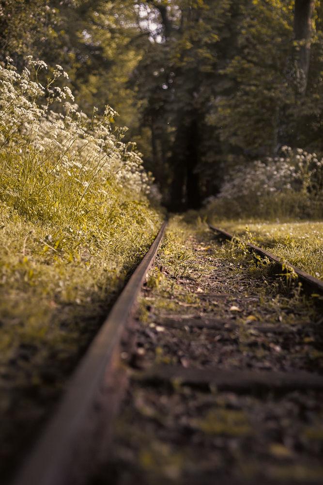Minirail by Baervan