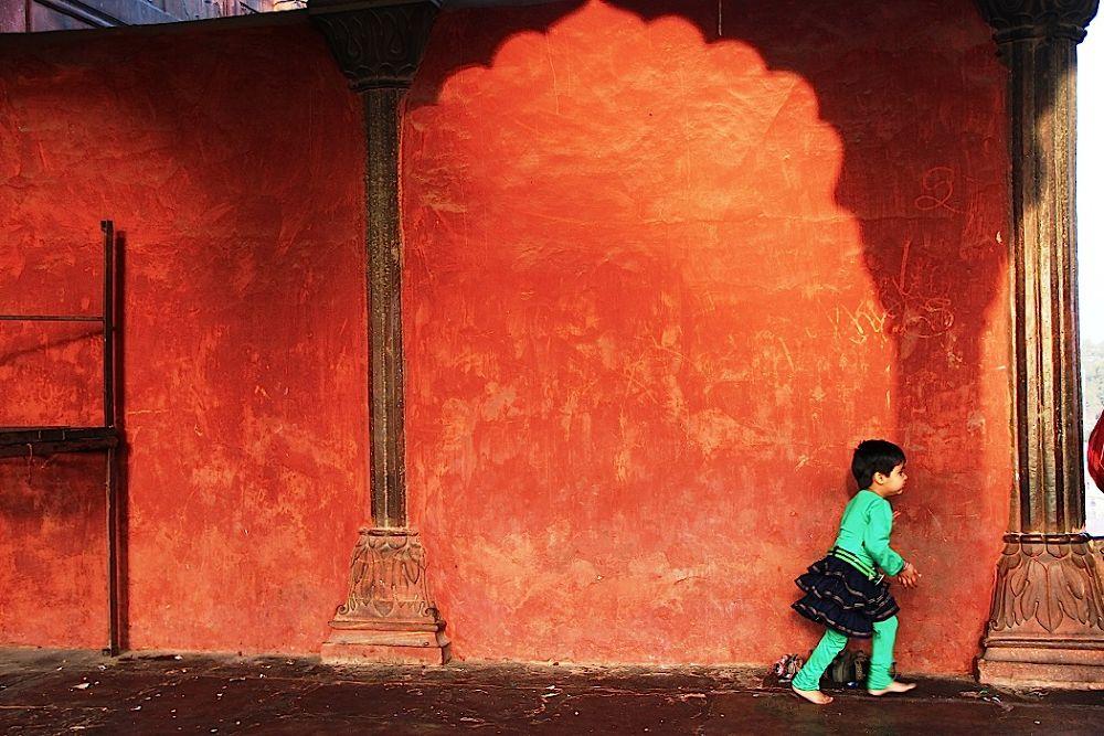 The Green Innocence by Aniruddha Guha Sarkar