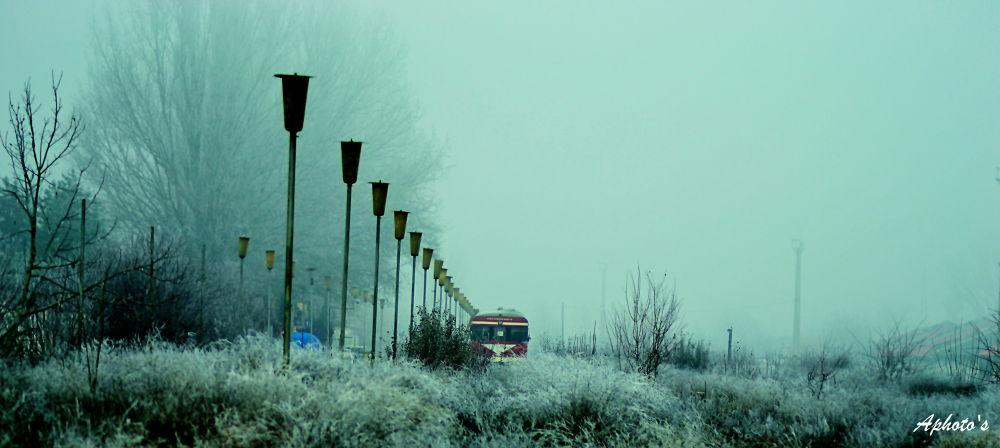 filtre 4 by Postolea Alexandru