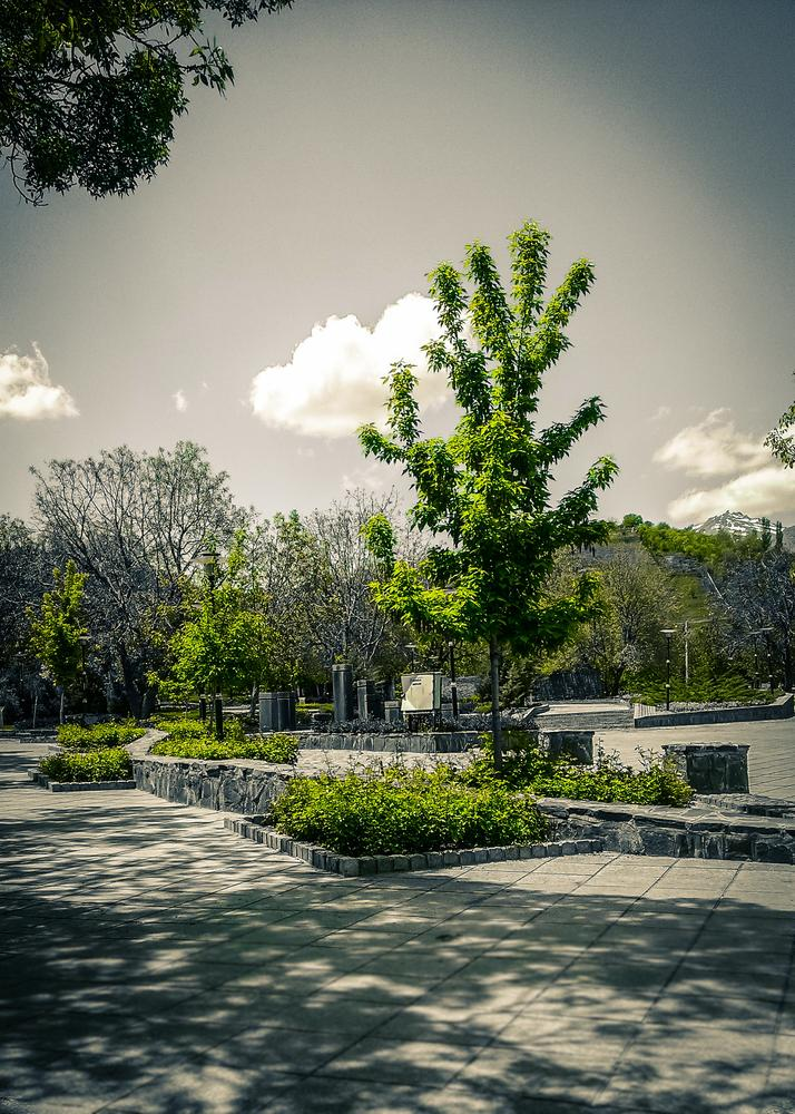 """boostan narges""  PArk  by Mamad Acm"