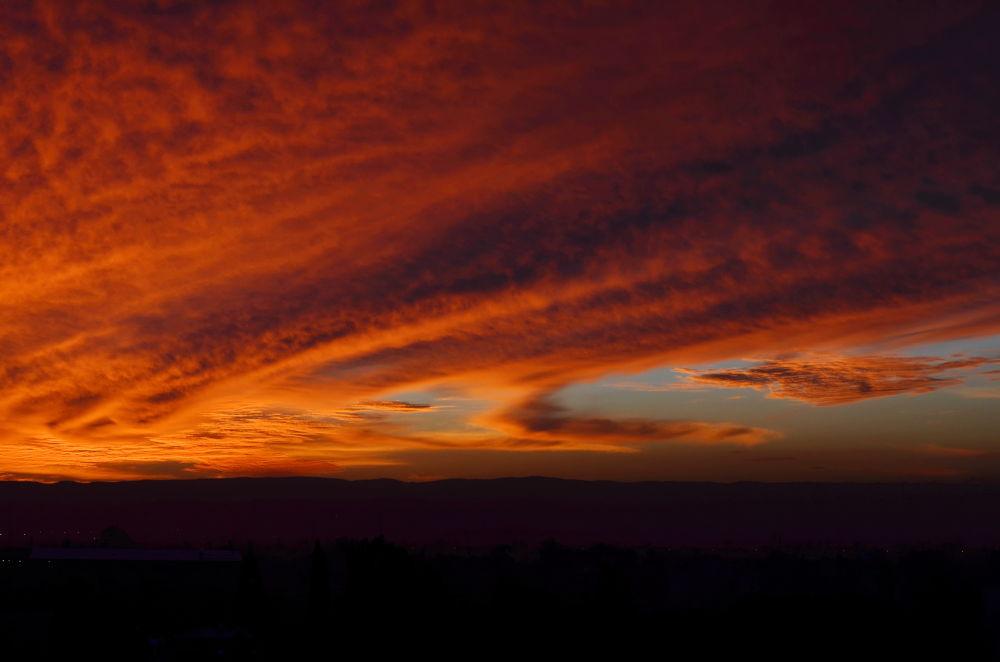 Dawn by Sheffi M.