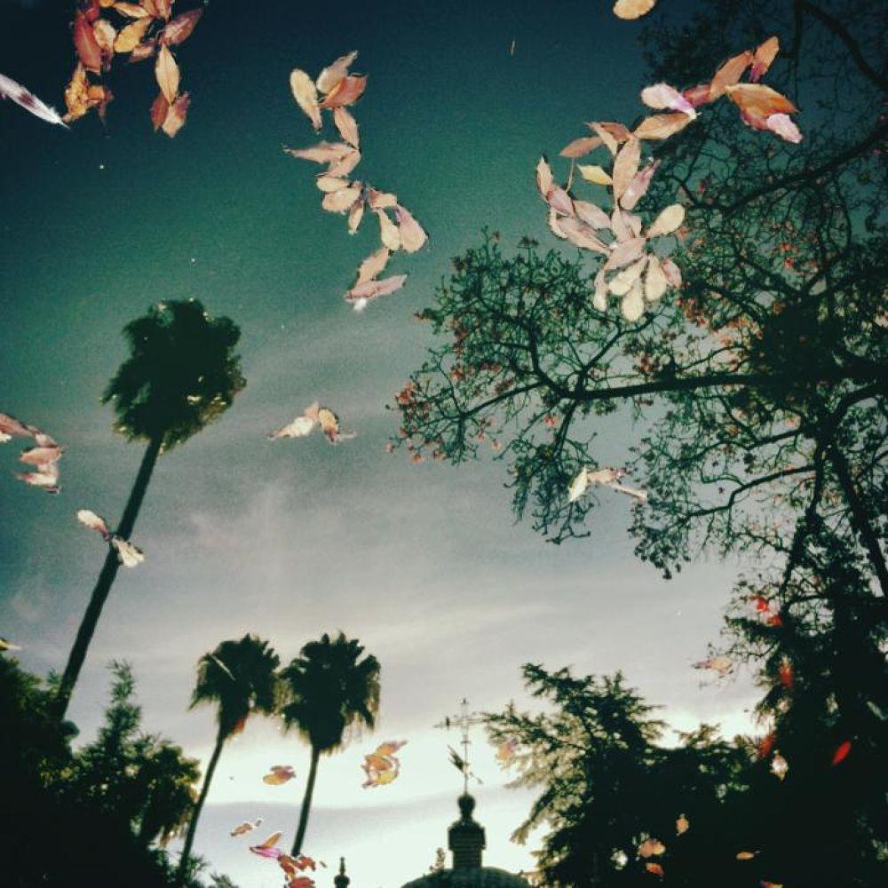 Heaven on Earth by jimtonic