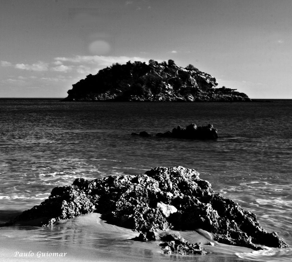 IMG_5561 by Paulo Guiomar