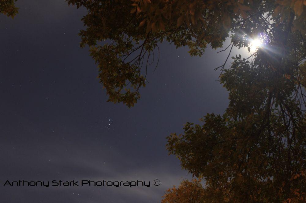 Moon Light by Anthony Stark