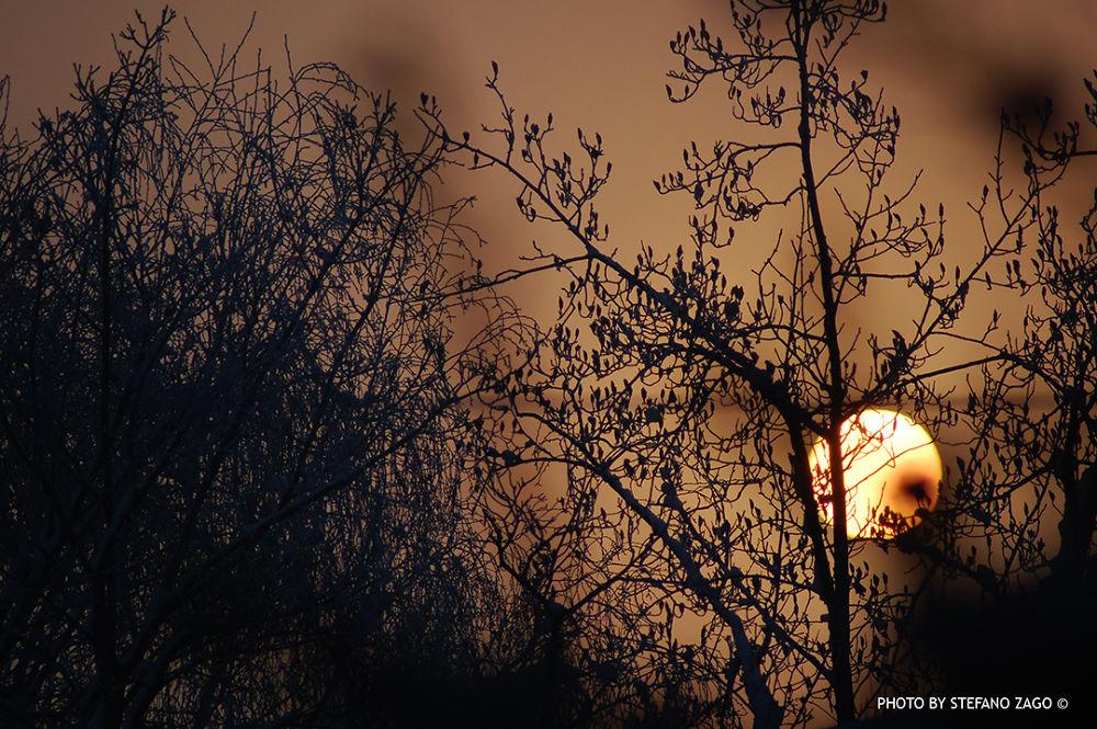 Sunrise by Stefano Zago