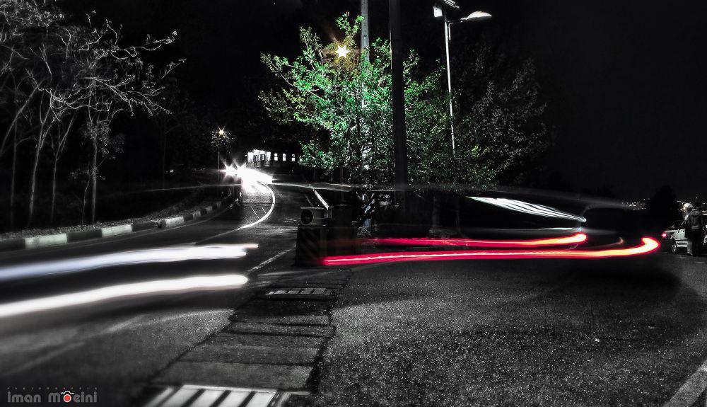 lavizan park by Iman Moeini