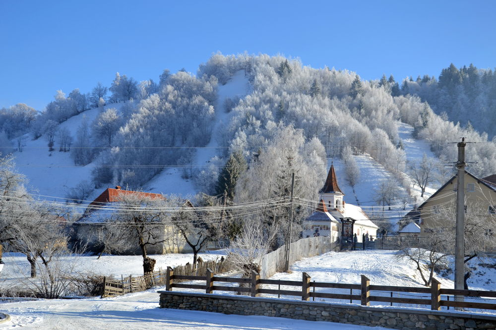 iarna by sophia