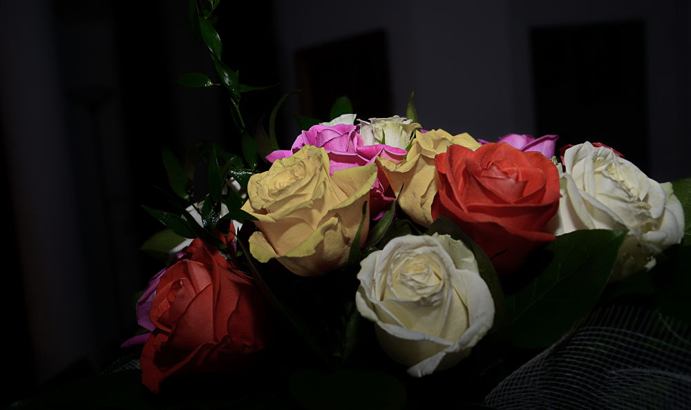 flori by sophia