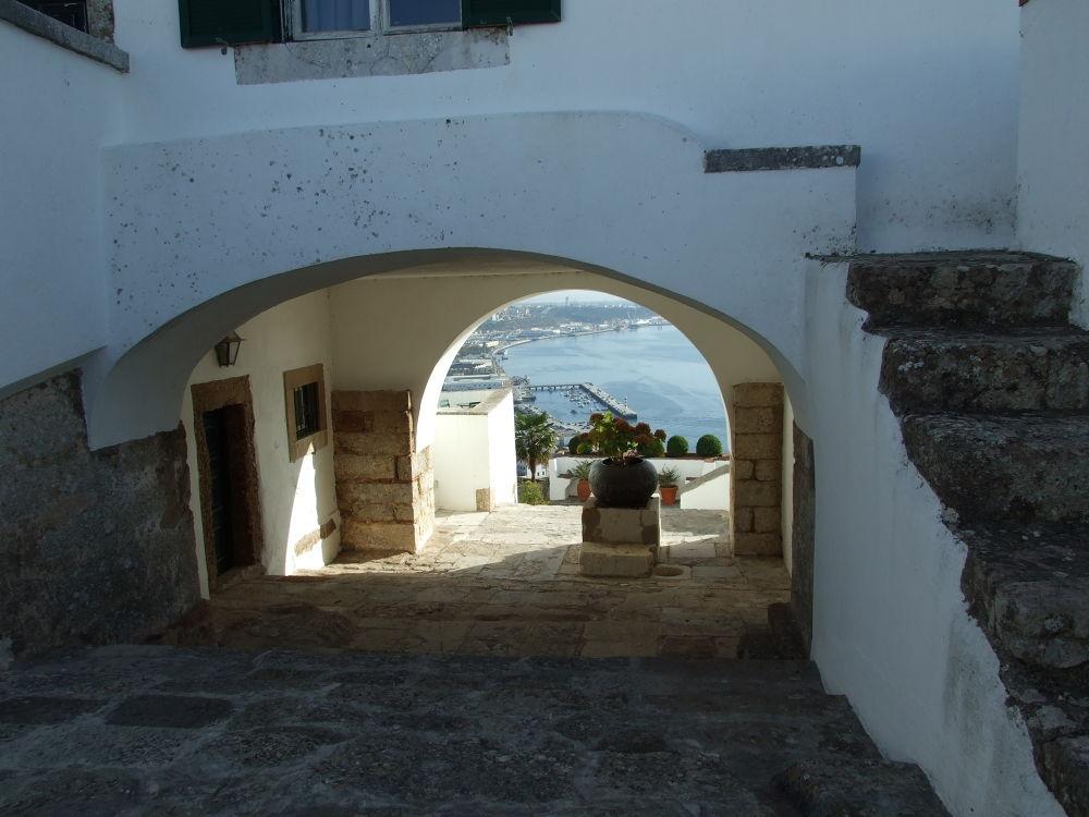 Forte de S.Filipe (Setubal) by miguel alonso