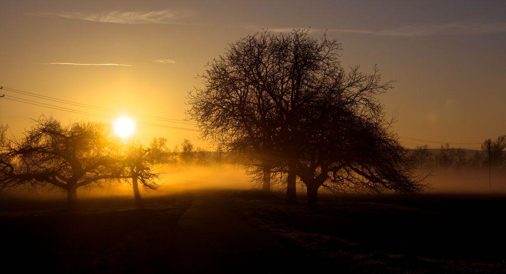 Foggy sunrise by midgardson