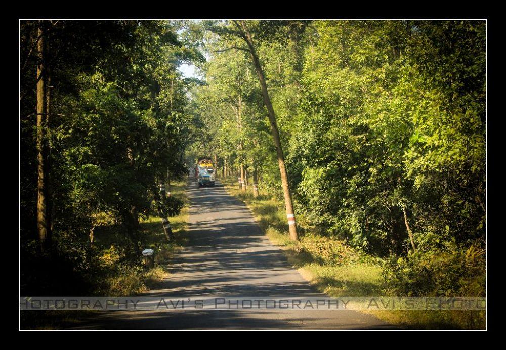 Road by Avijit Das