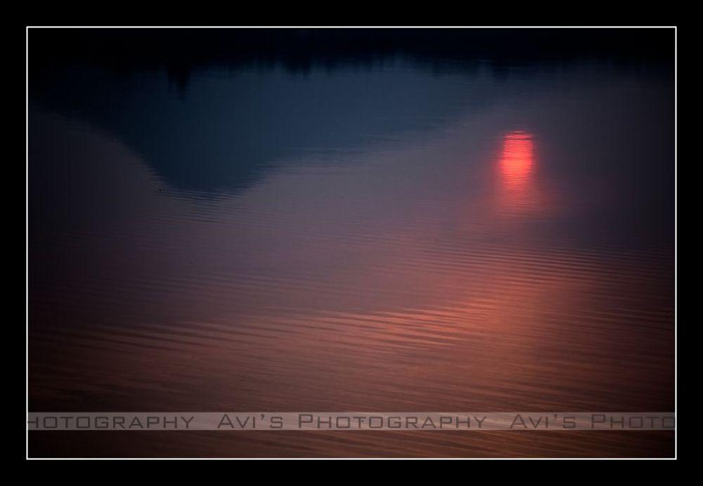 Rhythm of Colour... by Avijit Das