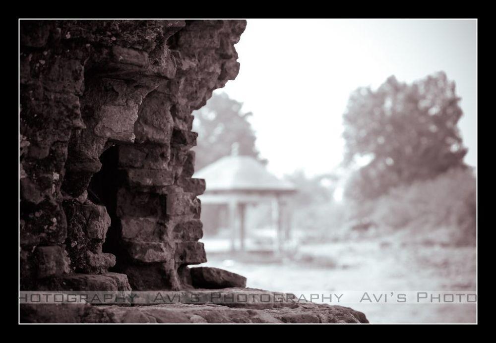 43 by Avijit Das