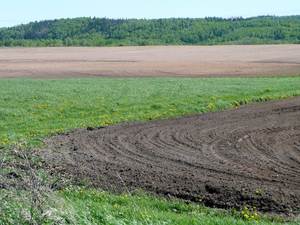 Springtime  fields  to  be   sown by jean-jacques  ouellet