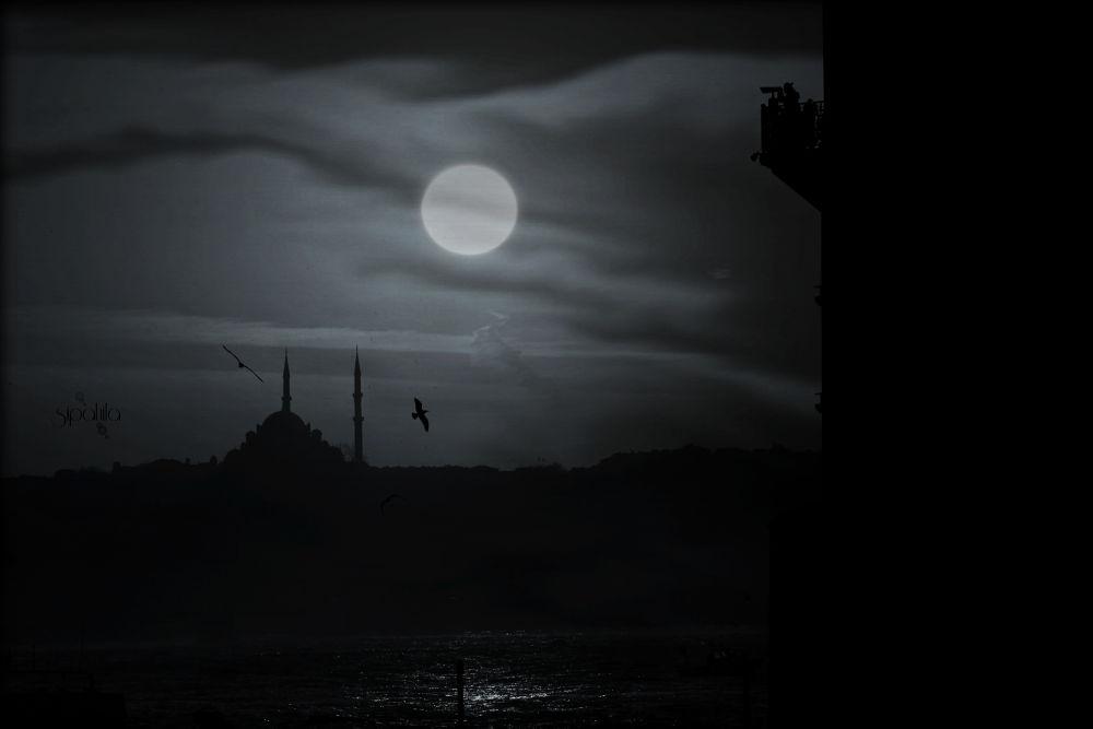Night by Ali