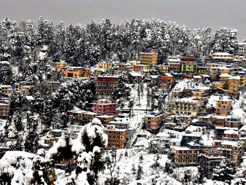 """""""MCLEODGANJ"""" town of his holiness the 14th Dalai lama.... by W Vishvjeet Singh"""
