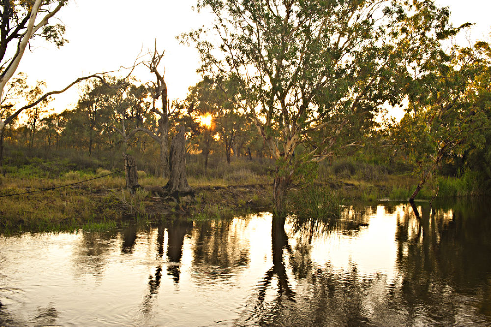 Mighty Murray4jpg.jpg by tcbenneyworth