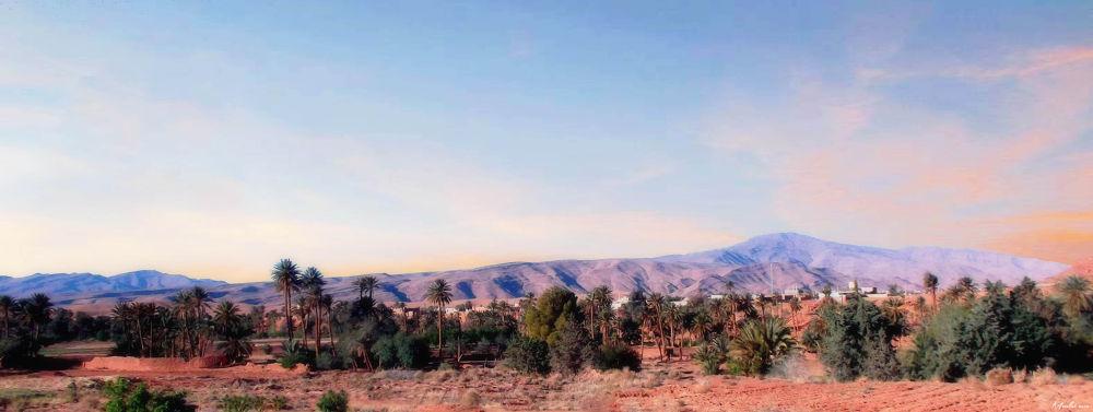 Landscape. by Samir Sami