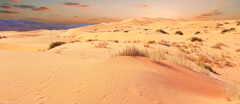Dunes by Samir Sami