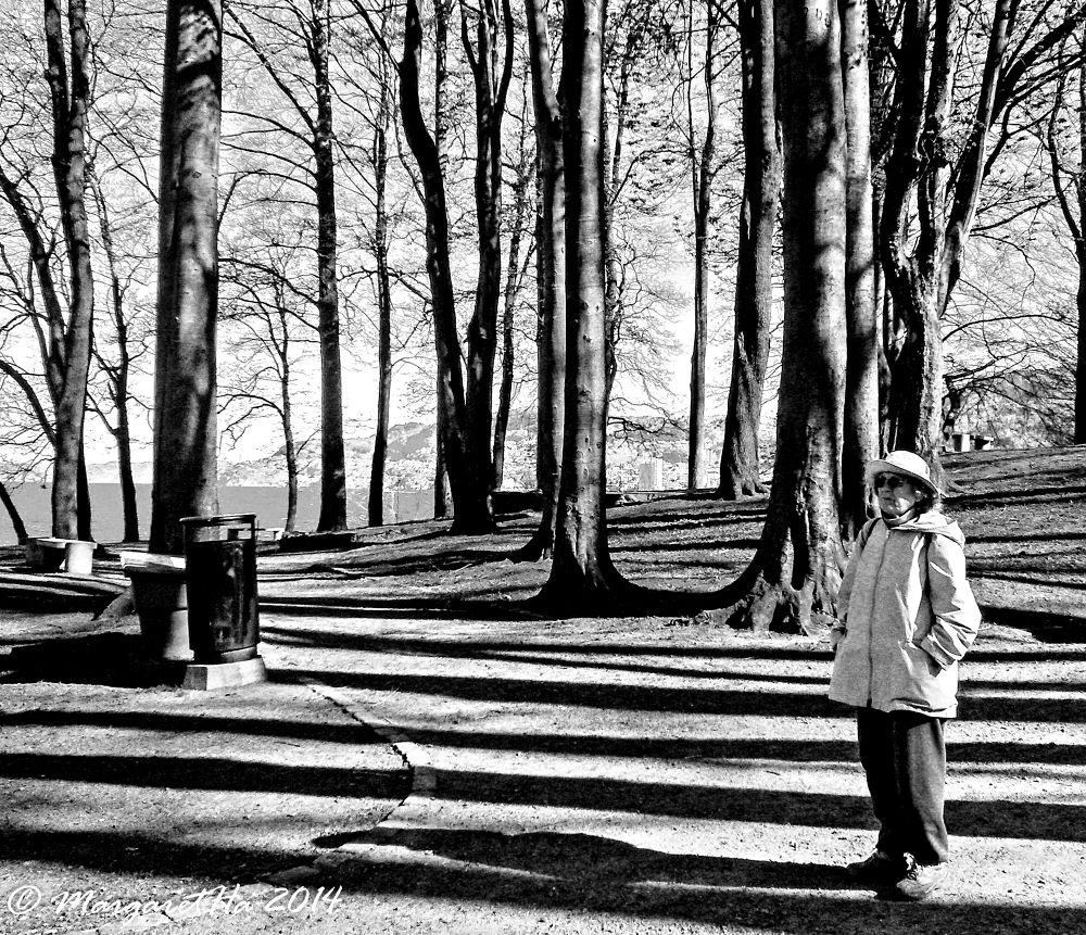 Memory lane by Margaret Brynildsen Hagevik