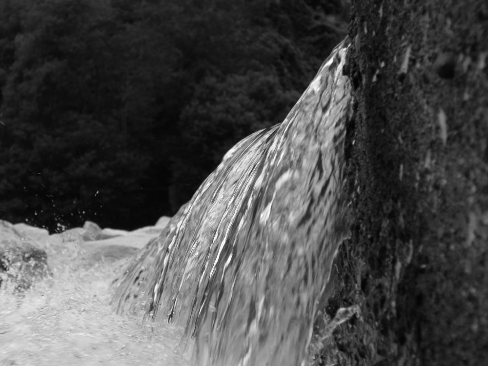 Falling Water by Paulo Nobre