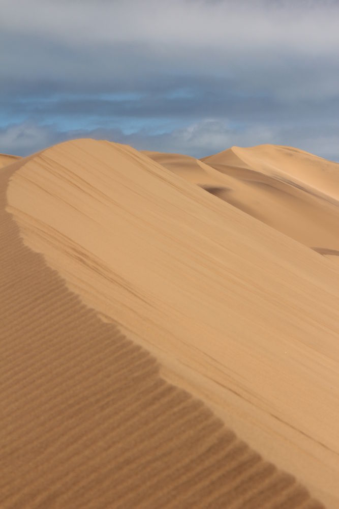 Piece of Dune by Chene Emmerick