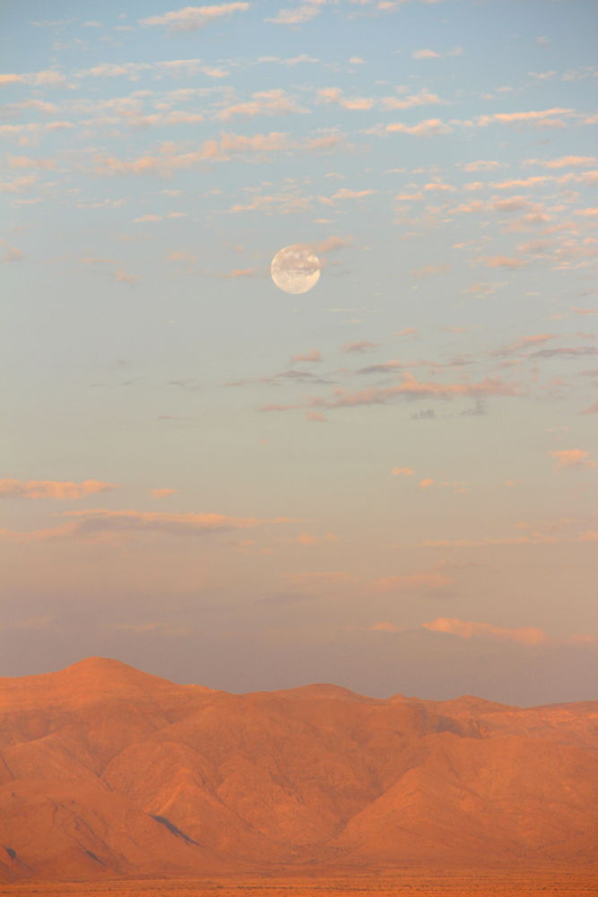 Moon during the day over the Desert by Chene Emmerick