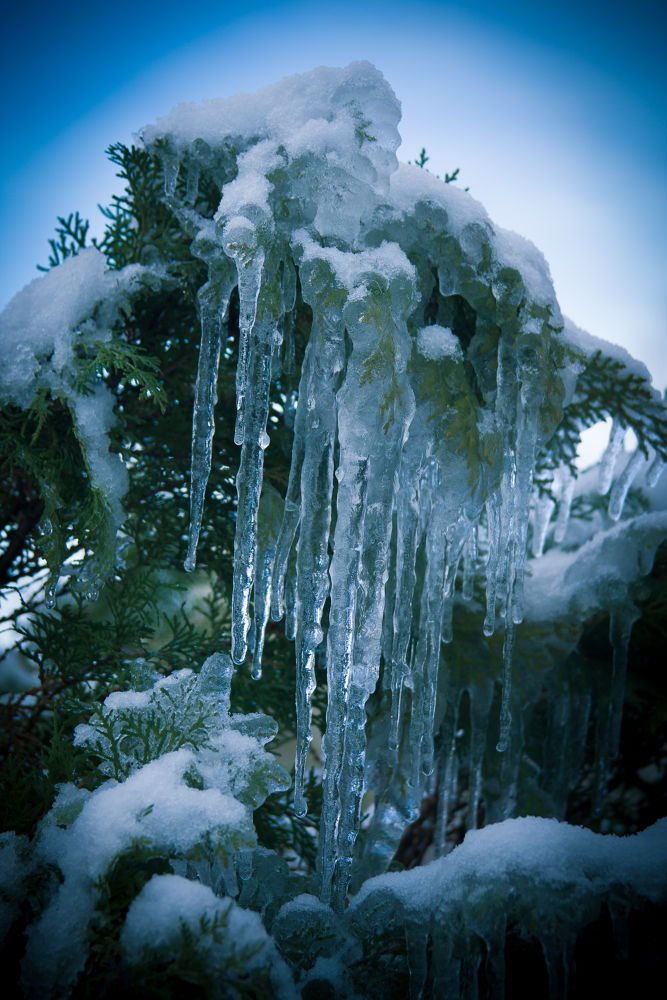 Winter Ice 2 by James T. Futrell