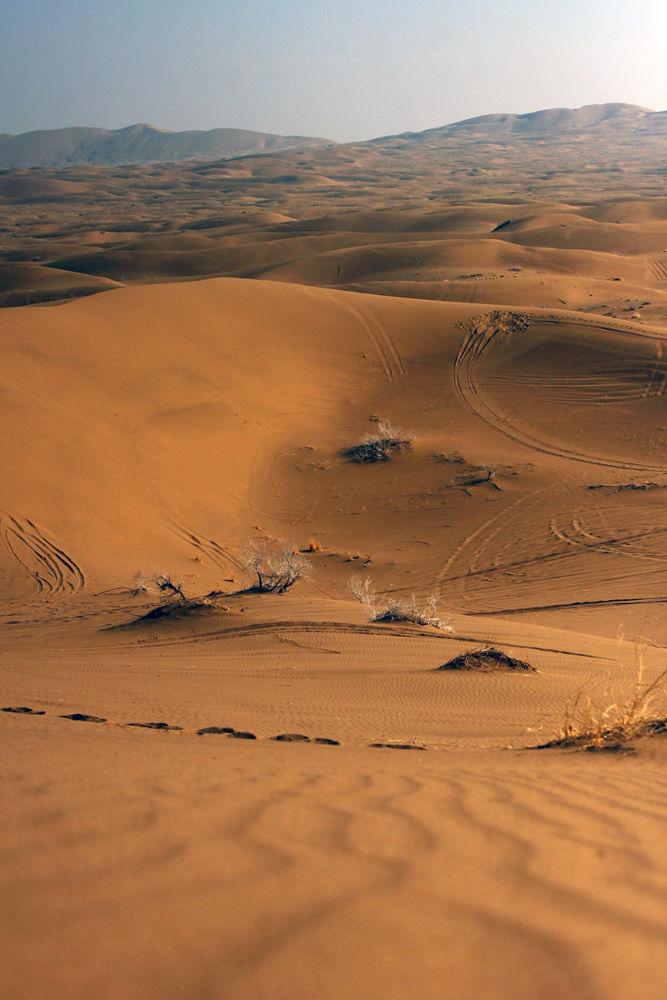 Marjab Desert by Ladan Sh