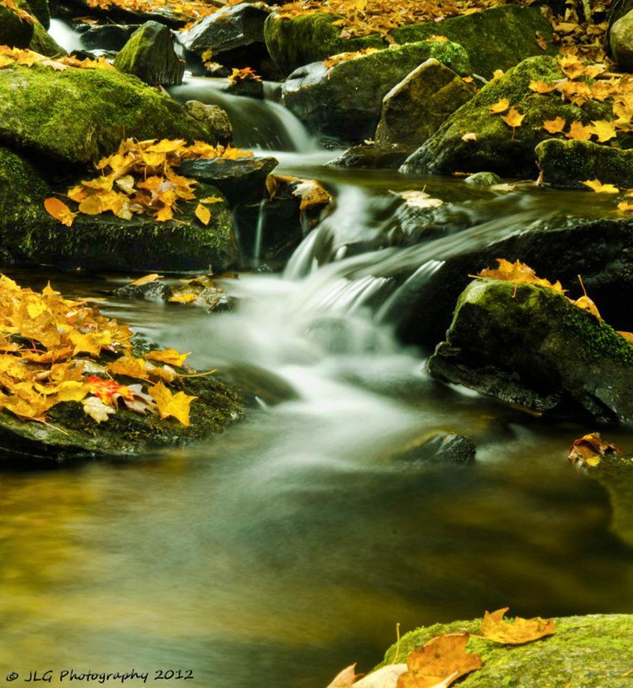 Autumn Brook by Jim Gasco