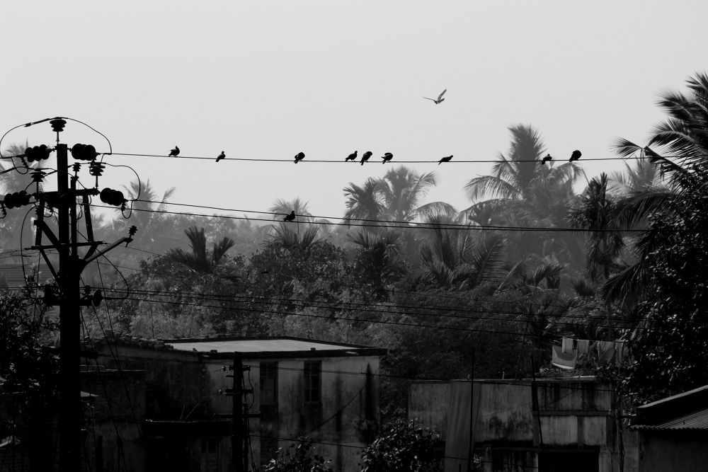 lining together by Shuvarthy Chowdhury