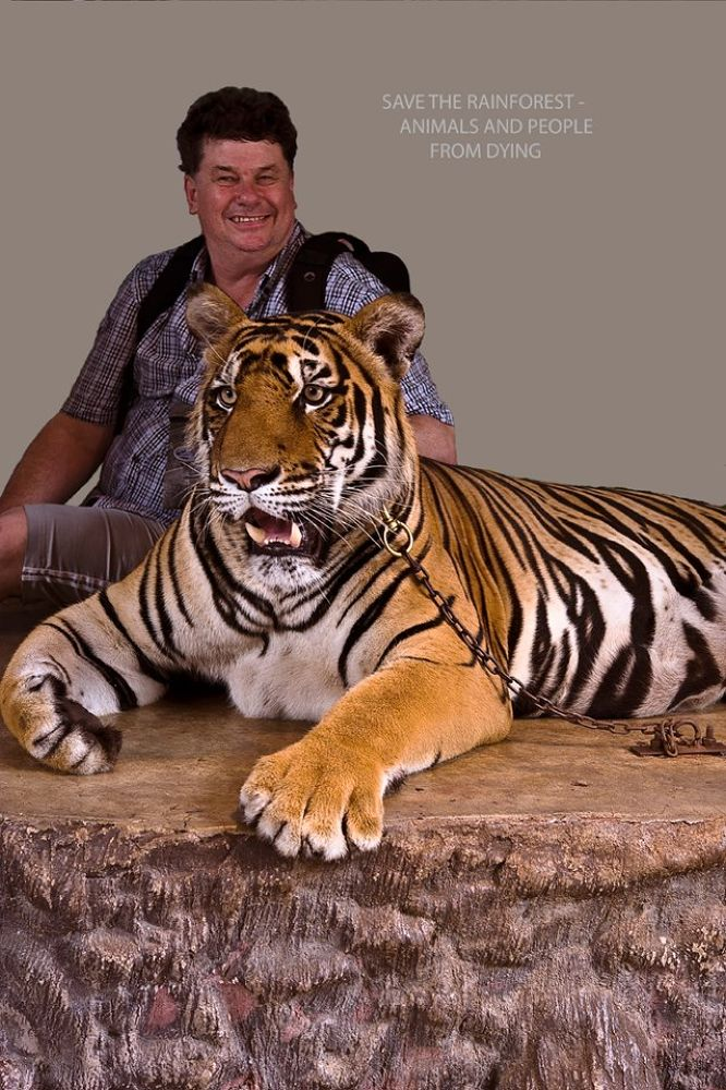 Talk to the tiger in Thailand by Svein Walther Hiis