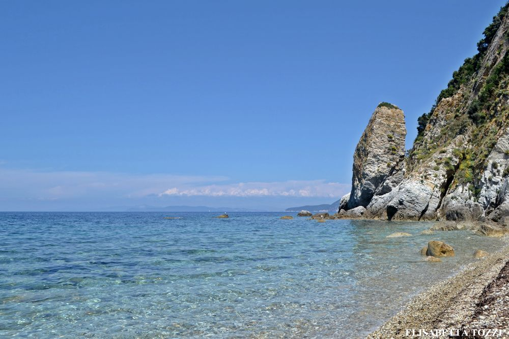 I love the sea by Elisabetta Tozzi