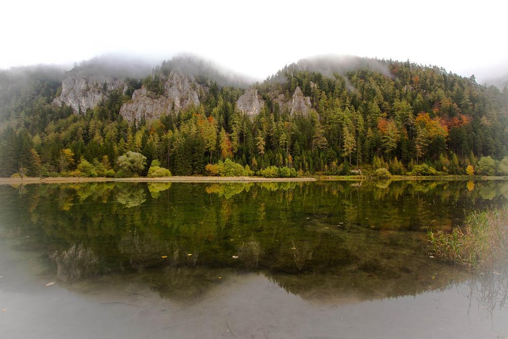 misty lake by Martin Kriebernegg