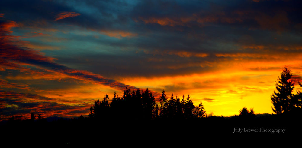 Color In The Sky by Judy Brewer
