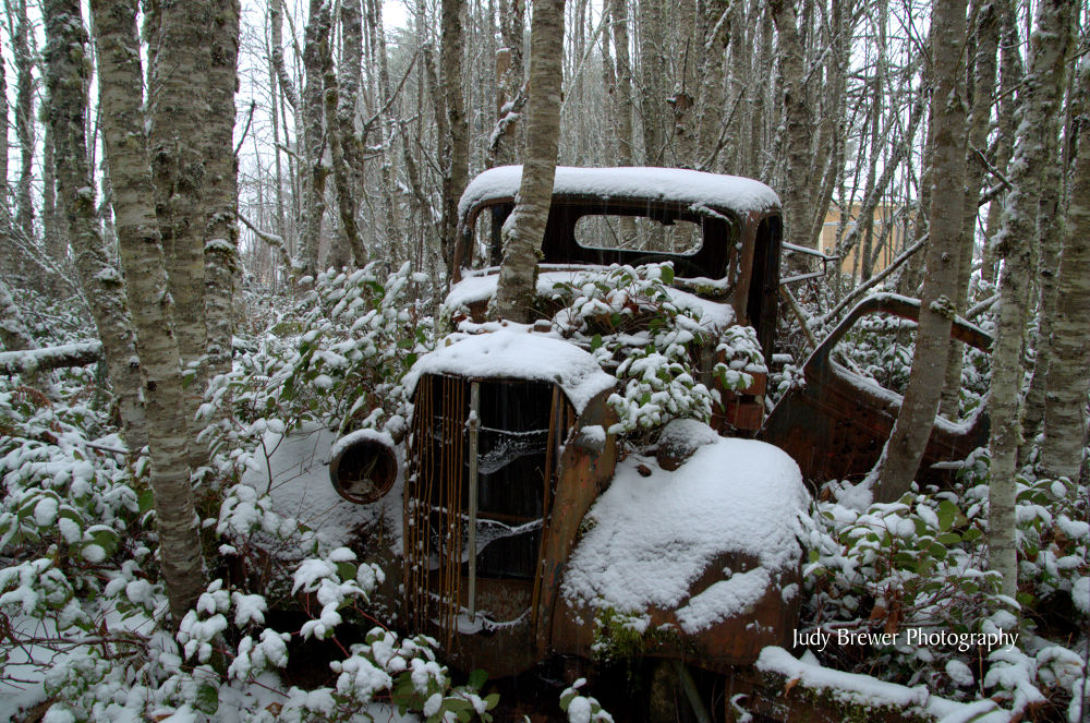 Old Rusty by Judy Brewer