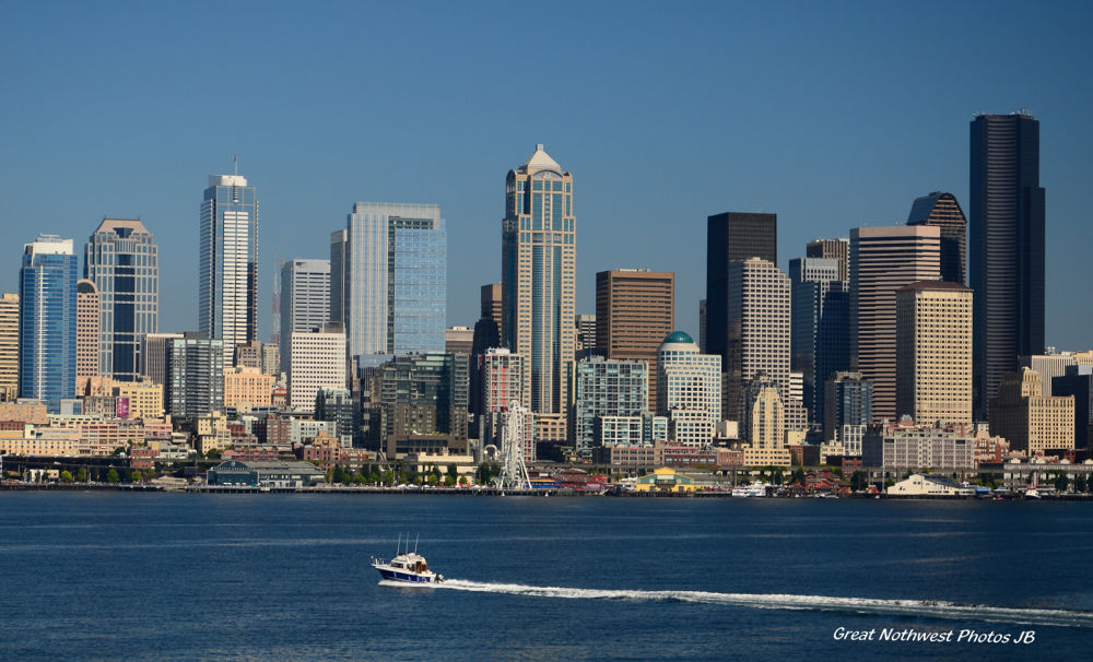 Seattle Sky Line by Judy Brewer