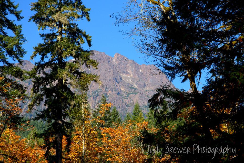 Mt. Washington by Judy Brewer