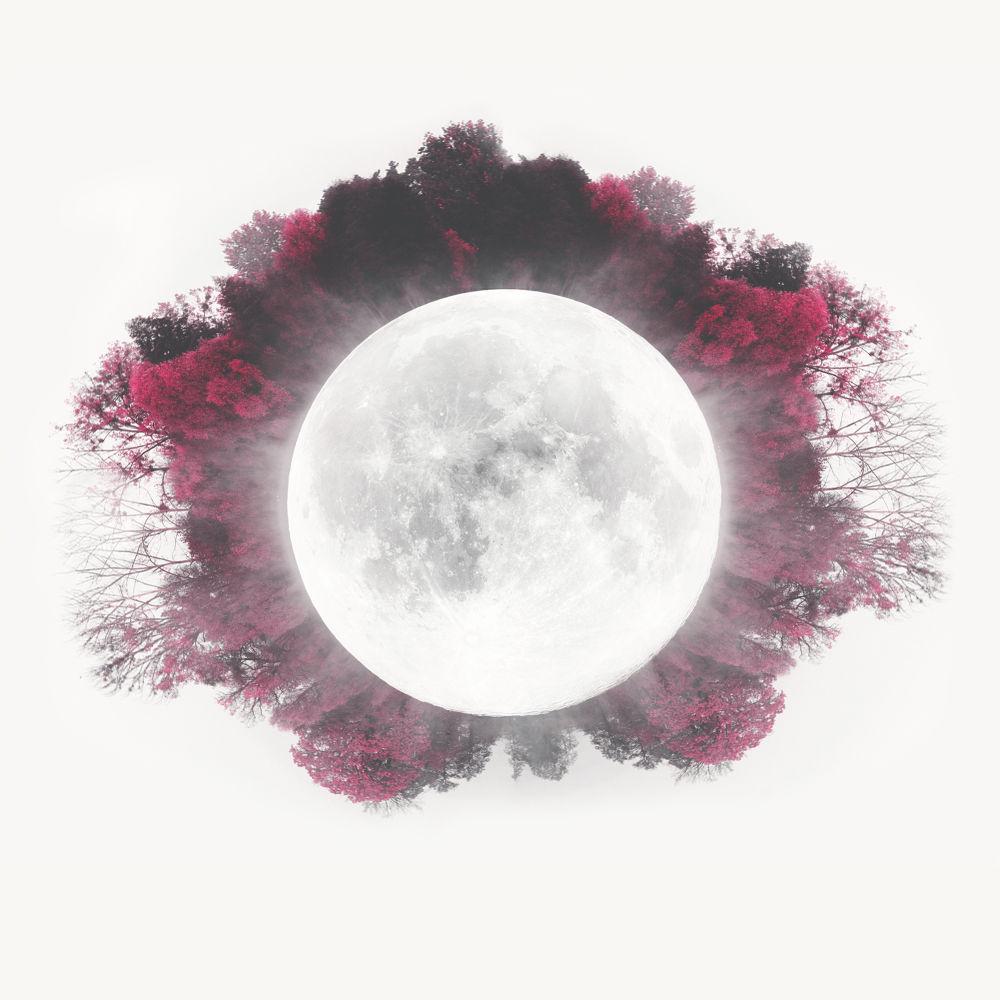 Planet Moon by olgak