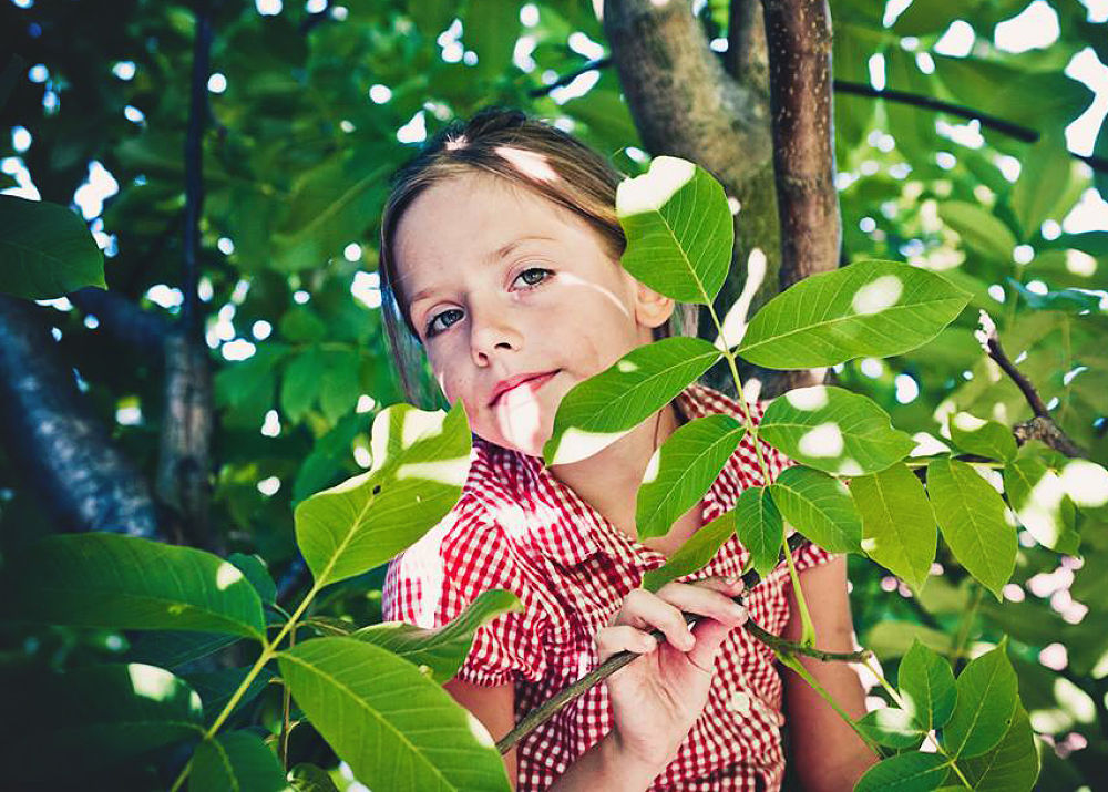 on a tree by olgak