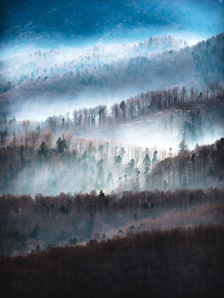 fog layers by AlexandruDamian