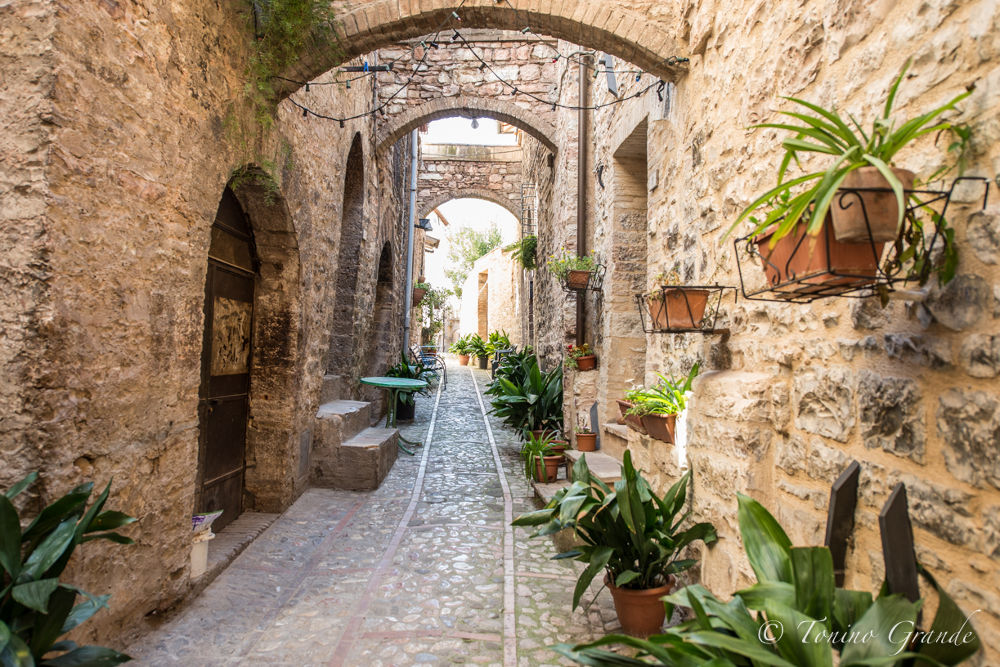 Spello, un borgo Umbro da favola by Tonino Grande