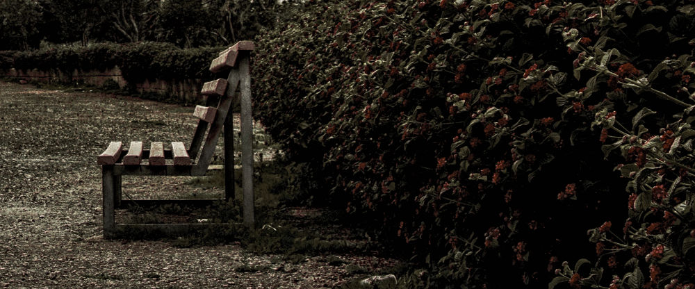 Solitary Bench by Charlot Scicluna