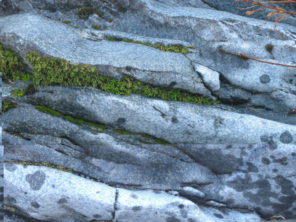 Sandwich Rock  by Wendy Williams