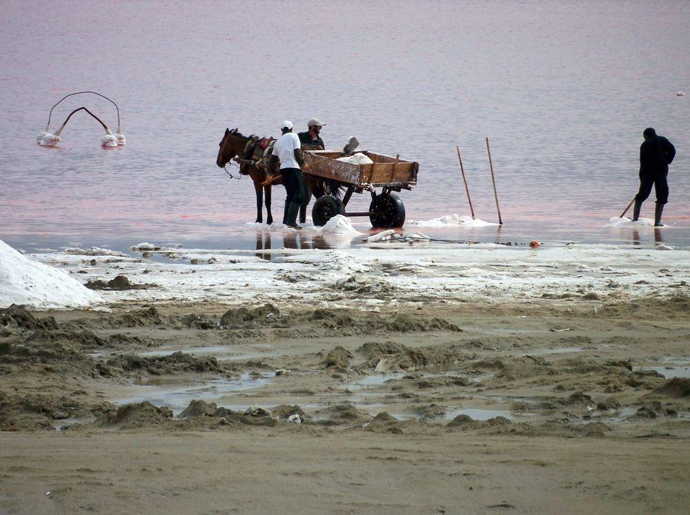 Salt Fields 1 by mariazinha