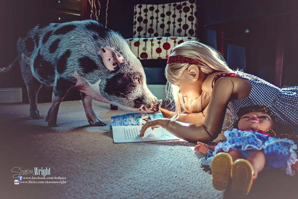 A Fairy Tale Life - a girl and her pig #2 by Sharon Wright
