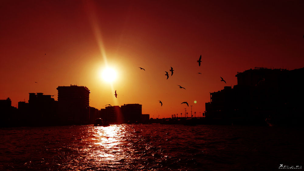 #sky #is #burning #wonderful #evening #birds  by Arjun
